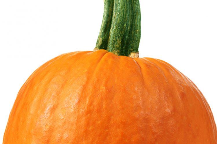 Is a Pumpkin a Squash?
