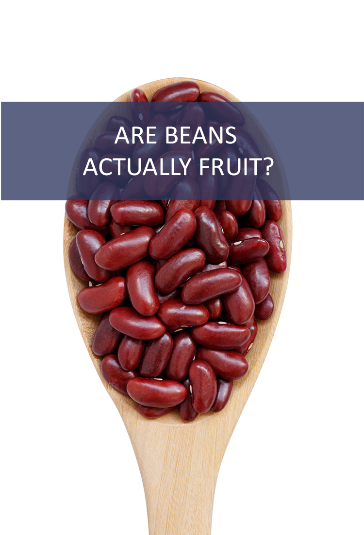 Beans are Often Called The Musical Fruit. But is That Accurate? Are Beans Actually Fruits?