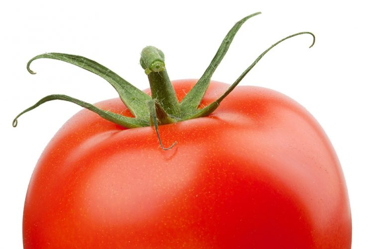 Are Tomatoes Vegetables?