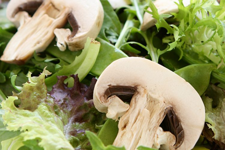 Are Mushrooms Vegetables?