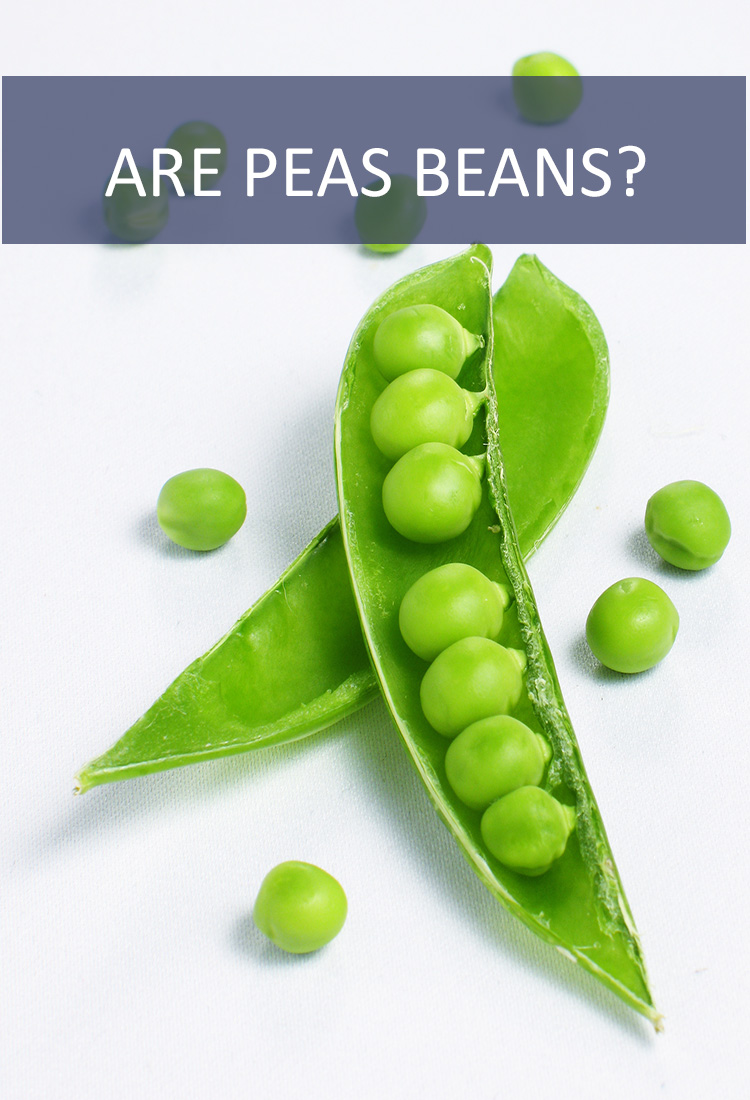 Many people mistake beans and peas. Are they the same thing? Do peas belong to the bean family?