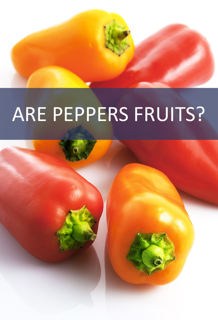 Peppers are a common component of a garden salad, but should they be classified as vegetables? Are peppers actually fruits in disguise?