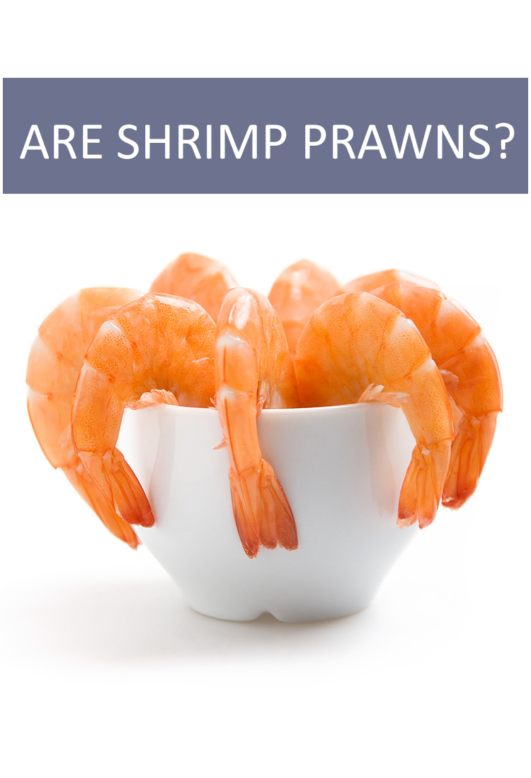 Are Shrimp And Prawns The Same Thing Is This That Food