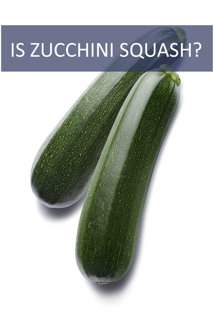 How does one classify a zucchini? The term zucchini squash gets thrown around a lot, but are zucchinis actually squash?