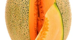 Are Melons Squash?
