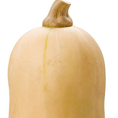 Is Butternut Squash Actually Squash?
