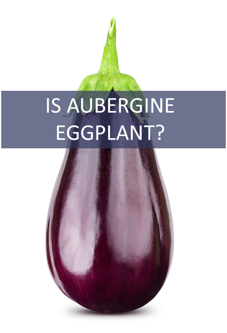 Eggplants and Aubergine look exactly the same. They taste exactly the same. Wait…are they the same?