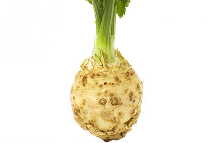Is Celery Root the Root of Celery?