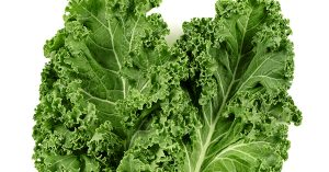 Is Kale Lettuce?