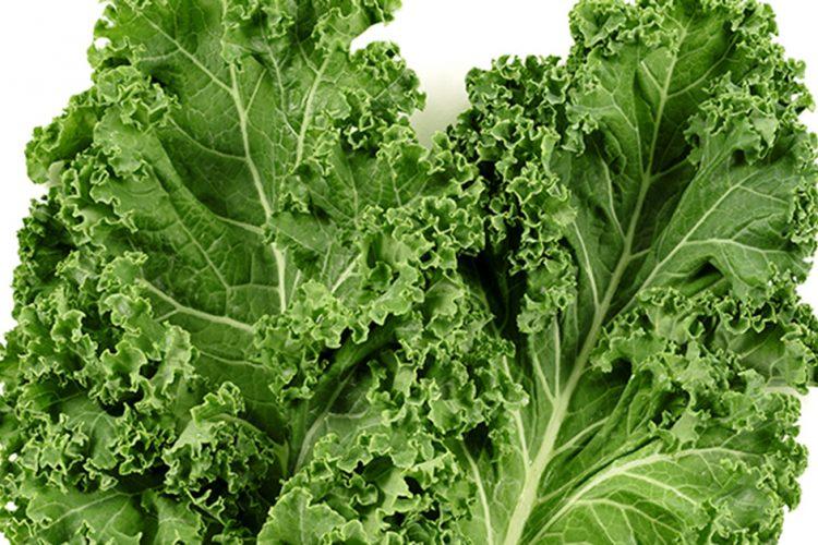 Is Kale Lettuce?