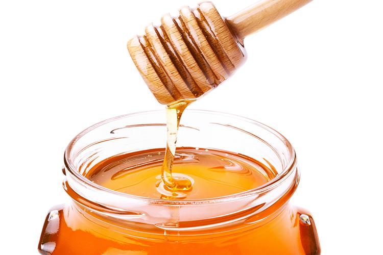 Is Honey Kosher?
