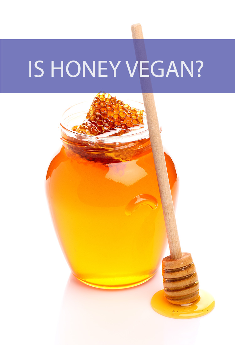 Honey is a smooth and sweet addition to everything from baked goods to sauces and tea. But if you're living a vegan lifestyle, does that mean you have to give up honey?