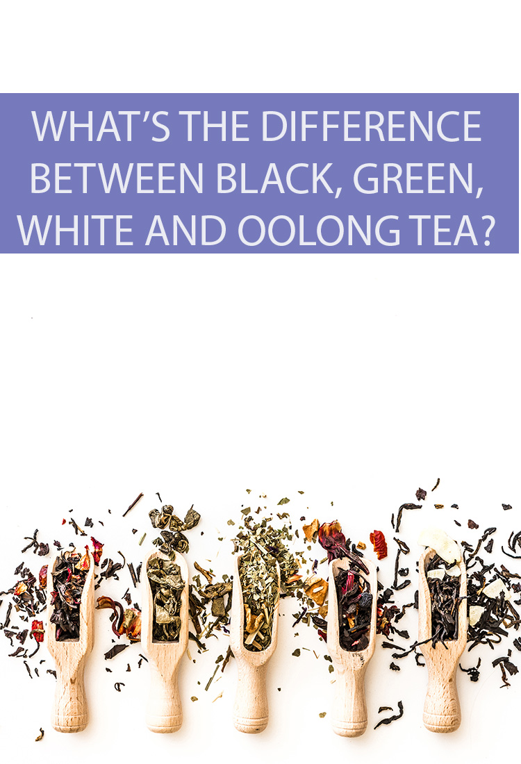 "The four ""real"" teas are black, green, white, and oolong. What are the similarities and differences that separate these four amazing beverages?"