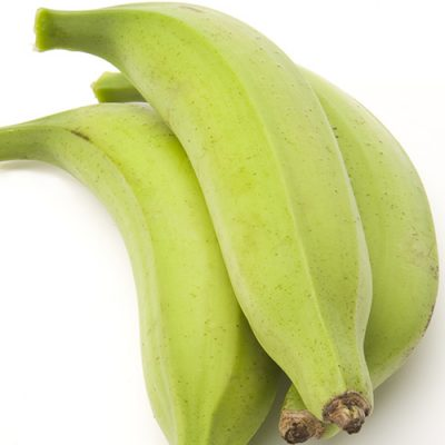 Are Plantains Bananas?