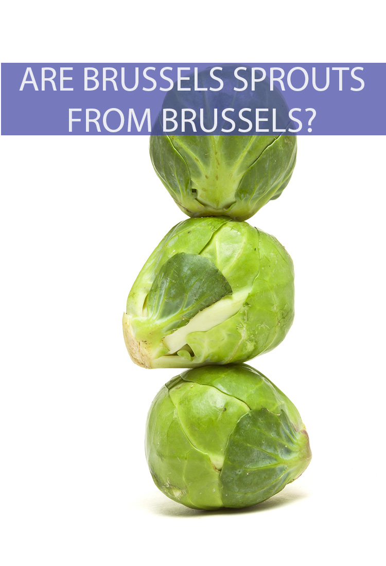 Where do Brussels sprouts get their name? Does it have anything to do with the capital region of Belgium? Do Brussels sprouts come from Brussels?