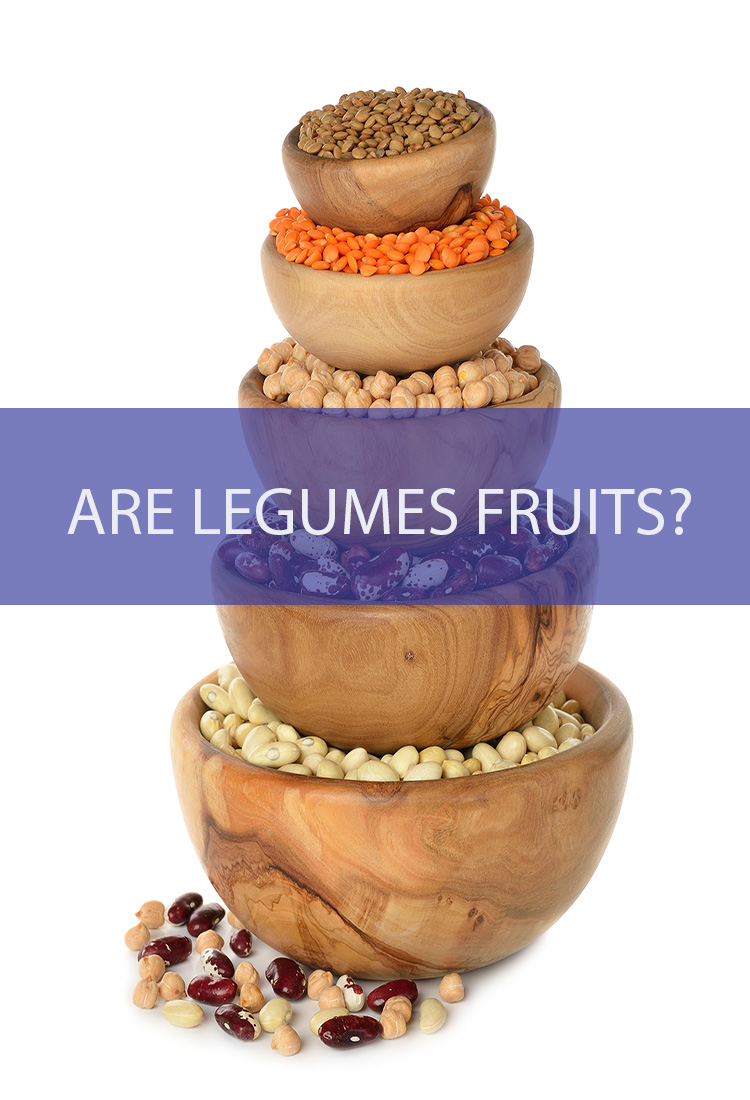 We know legumes as edible seeds that grow from a flower and are encased in a pod. Wait…isn't that also describing a fruit? Are they the same thing?