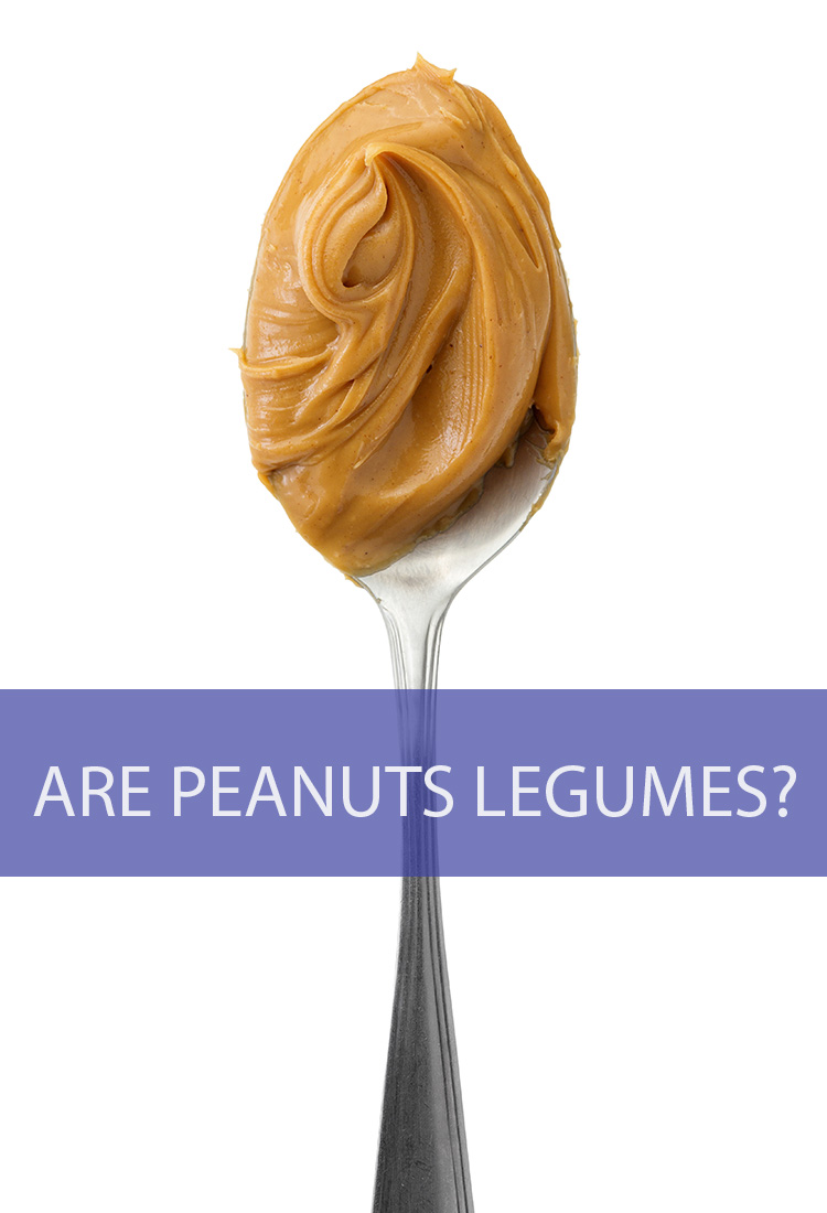 Is it possible that peanuts, one of the most popular nuts in the world, are not actually nuts at all? Are they legumes?