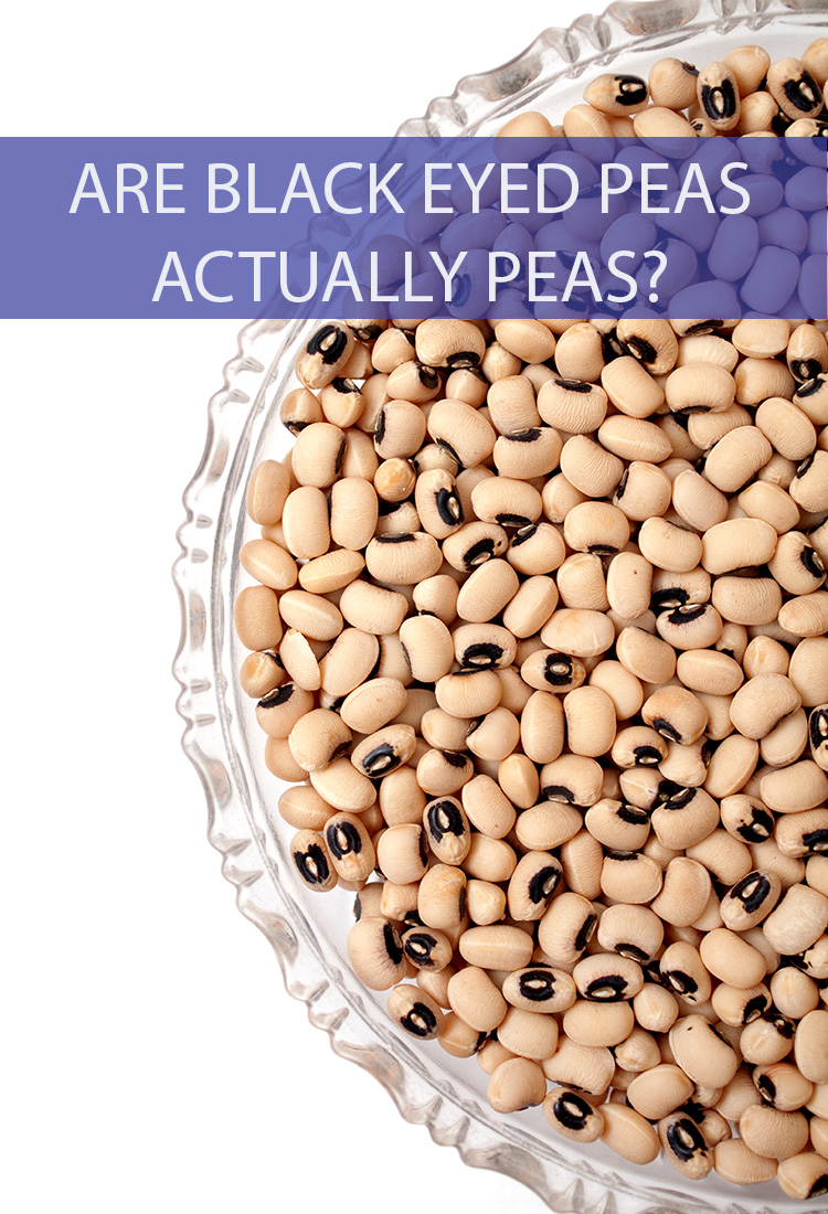 They're called black-eyed peas, so naturally one should assume that they're peas. But are they really? Do black-eyed peas belong in the pea family?