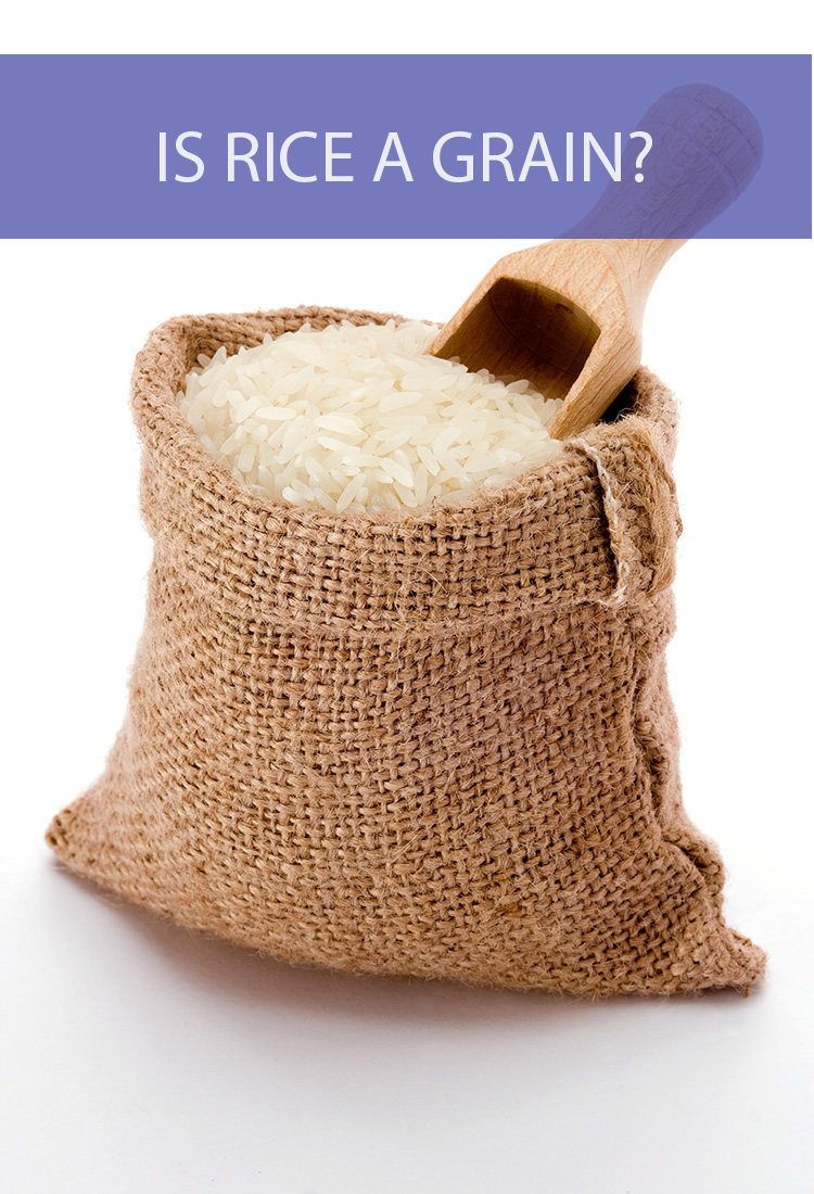 Rice is one of the most popular foods in the world, but how is it classified? Is it considered a grain?