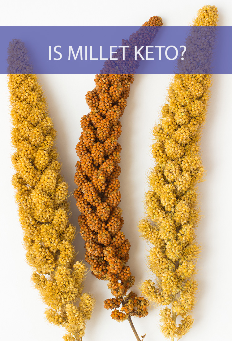 The Keto diet forces you to give up a lot of foods for the sake of ketosis. But what about millet? Can millet still be enjoyed on a keto diet?