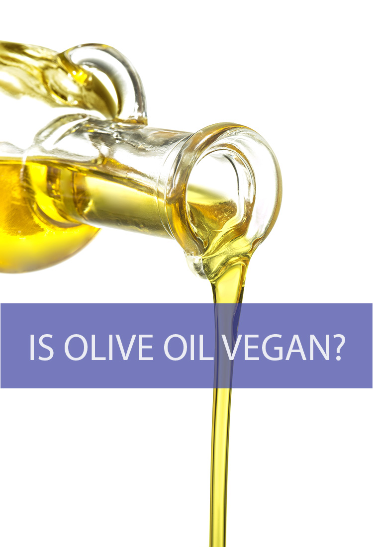 When you take on a vegan lifestyle, it means giving up a lot of the food products that most of us take for granted. But what about olive oil? Can you still cook with this versatile oil if you're following a vegan diet?